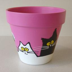 Pink Maxi Pot - Large Black and White Cats