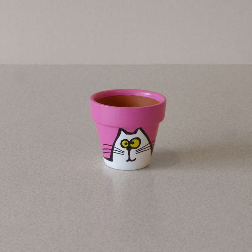 Cats In Your Face Pink Planter Pots And Stones For Sale